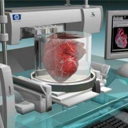 3d печать органов человека на принтере